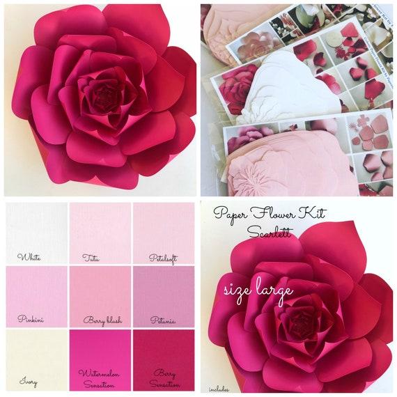 Paper flower kit do it yourself paper flower kits paper mightylinksfo