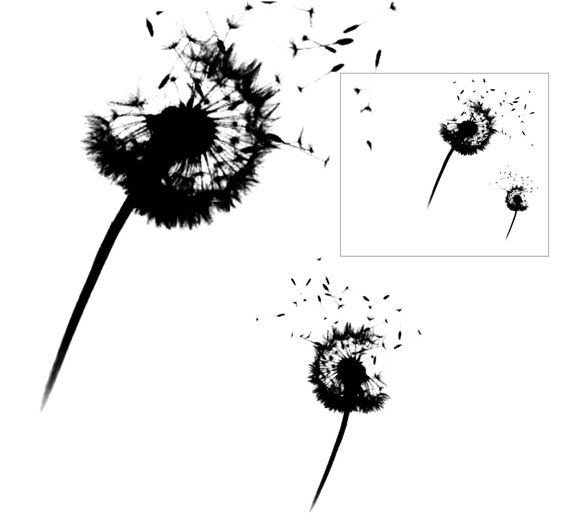 Dandelions  silicone clear stamps