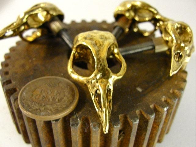 Metall Vogel Schädel Schrank Knopf Gold Goth Kabinett-Hardware   Etsy