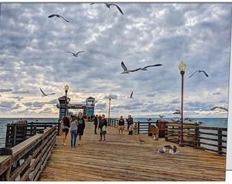 Oceanside Pier Birds Note Card