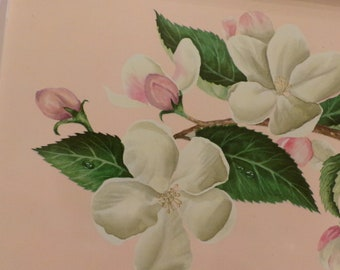 Pair Mid Century Metal Serving Trays, Pink & White Apple Blossom Flowers, Shabby, Cottage Chic, TV Tray, 1950s-60s Trays
