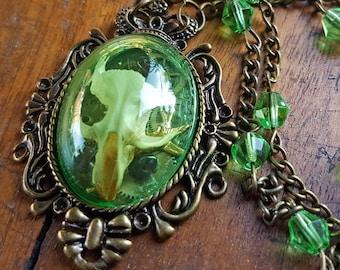 Taxidermy Rat Skull Shadowbox Necklace - Rosalind in Bronze & Green