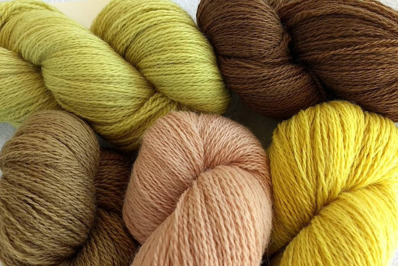 Gift For Knitter YAFC111810 curated collection of 5 fingering-weight skeins Natural Dye Wool Free Shipping