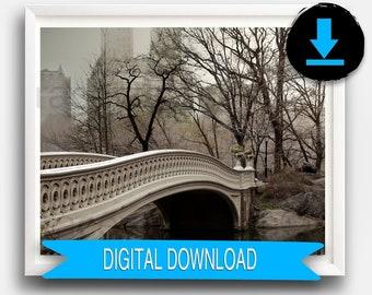 PRINTABLE New York Print, Central Park Print, Bow Bridge, Brown, Beige, Neutral, Fine Art 50x70 8x10 5x7 16x20