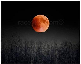 Blood Moon, Nature Photography, Black & Orange Moon Art- Full Moon Print, 2015 Super Moon
