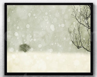 Winter Art Print, White Decor, Nature Photography, Neutral Rustic Large Wall Art