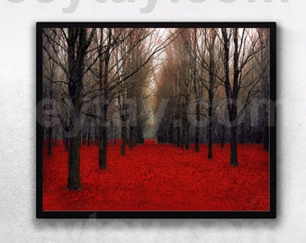 "Nature Photography The Red Forest Rustic Wall Art Fall Decor Fine Art Print ""Fiery Autumn"""