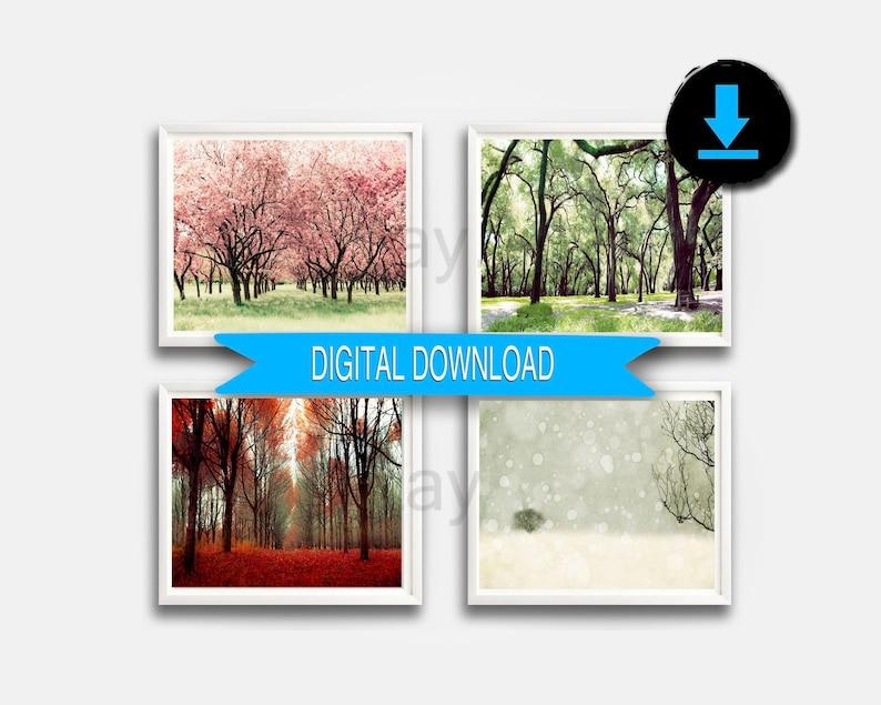 Printable Fine Art Nature Photography 4 Seasons Prints Four image 0