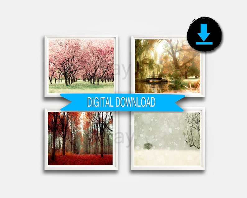 Printable 4 Seasons Tree Print Nature Photography Four image 0