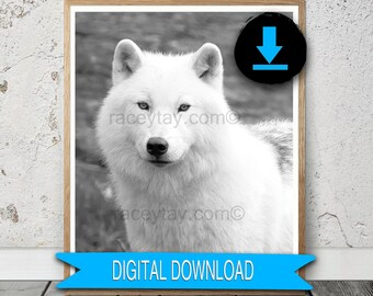 Digital Wolf Print, Printable Black and White Nature Photography, 8x10 Arctic Wolf Print A3 5x7 12x12