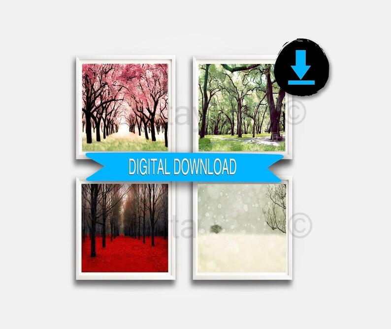 4 Jahreszeiten Wand Kunst Druckbare Kunst Naturfotografie Vier Jahreszeiten Art Prints 4 Jahreszeiten Baum Drucke