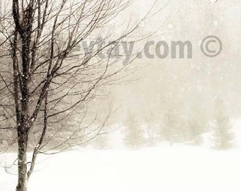 Winter Tree Print, Nature Photography, White, Brown, Snow Landscape, Rustic, Cabin Decor, Tree in Blizzard