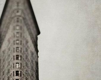 New York Print, Flatiron Building, Brown, Beige, New York Photography, Vertical Print