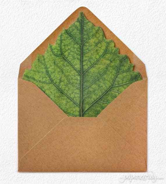 Hibiscus Leaf Envelope Liner + Envelope - PACK OF 25 - Select Envelope Size  and Color