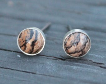 Picture Jasper 6mm Bezel Set on Niobium or Titanium Posts (Hypoallergenic Stud Earrings for Sensitive Ears)