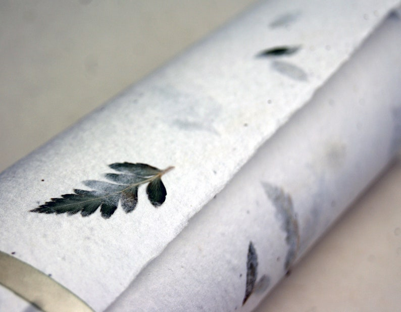 Handmade Seed Paper with Leather Fern Frond and Wild Flower image 0
