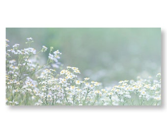 Flower Landscape Photo, White Flower Print, Field of Flowers, Country Home Wall Decor