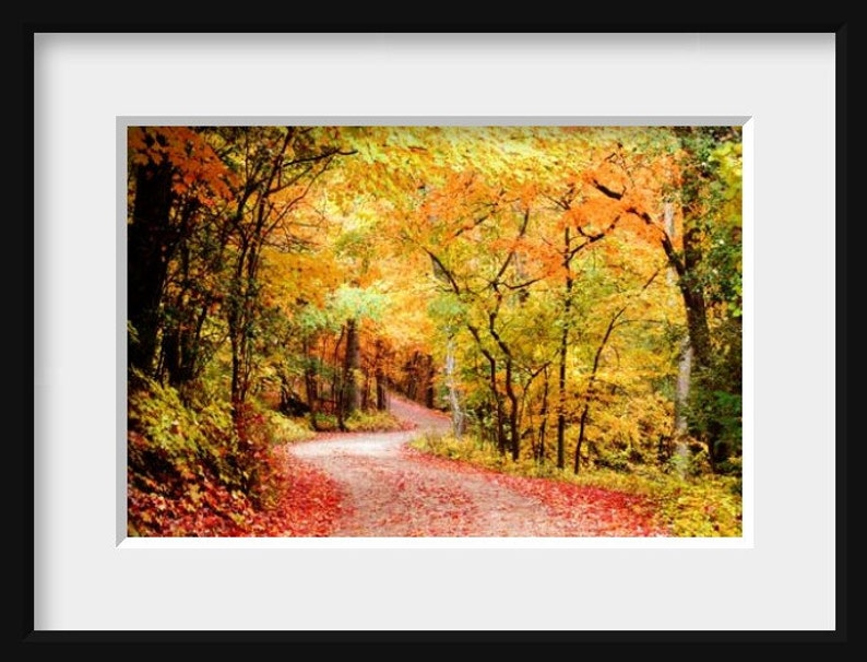 Fall Foliage Autumn Print Fall Landscape Photo Autumn Leaves Photo Autumn Landscape Photo Fall Decor Autumn Home Decor