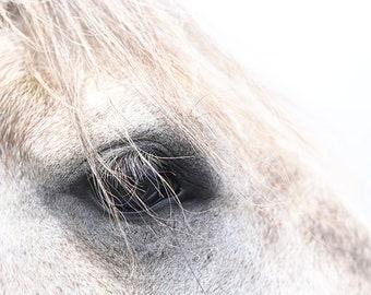 Horse Photo, Farmhouse Wall Decor, Horse Eye Photo, Horse Print, Horse Canvas Art