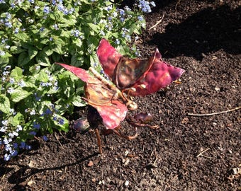 Copper Butterfly