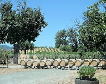 Napa Valley winery color photograph