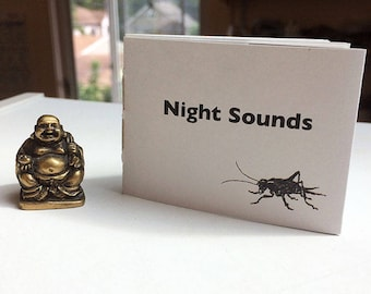 A mini zine about listening to nature on a summer night in the city, with black line drawings.
