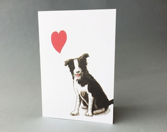 Border collie love card. Cute dog with heart small note card is blank inside for birthday, anniversary, thank you, miss you.