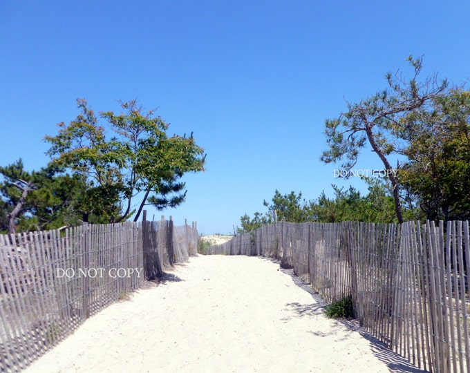 Beach Dunes Photograph|Clear Blue Skies Over Dewey Beach Dunes Downloadable Print |Create Your Own Photo Gift For Beach House