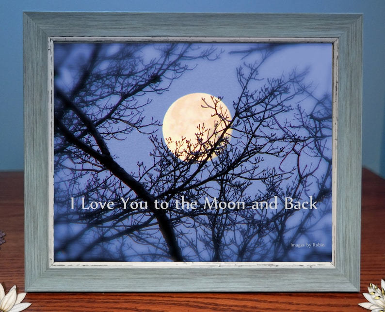Digital Photo Gift  Love You To The Moon and Back  Framed image 0