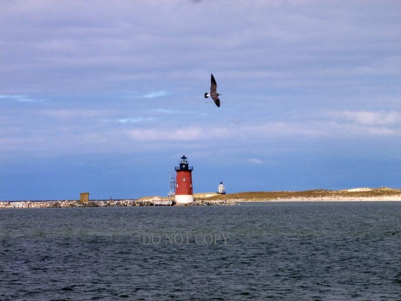 Cape Henlopen Light House Photograph  Beach Decor image 0