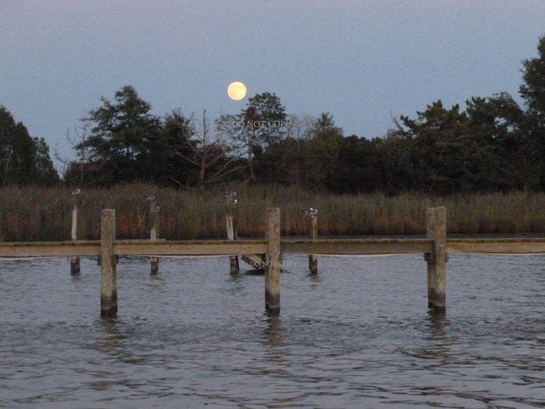 Moon Over Dock Of The Bay Photograph Create A Photo Gift  image 0