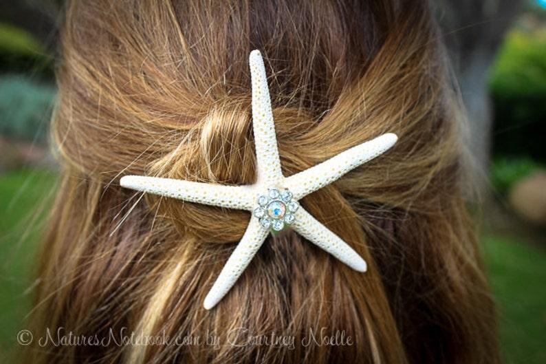 Starfish Hair Barrett Starfish Hair Clip  Unique Stocking image 0