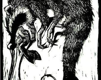 Racoon Shrimp Linocut Print