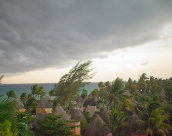 Before the Storm, rooftop, canopy, rolling clouds, nature
