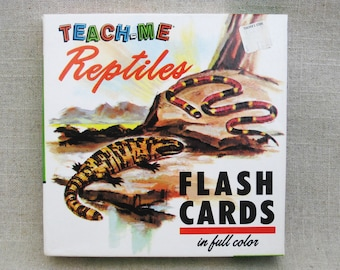 Vintage Retile Flash Cards, Teaching and Educational Toys
