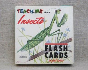 Vintage Insect Flash Cards, Teaching and Educational Toys