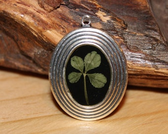 Real Four Leaf Clover Charm for St. Patrick's Day or any day for Good Luck