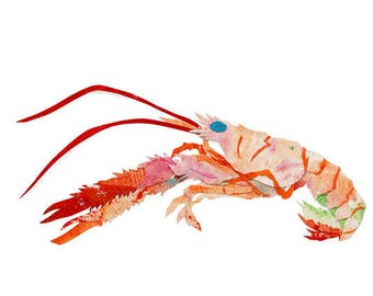 Crawfish, Painted Paper Collage Art Print