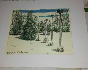 Original colored pen and ink drawing