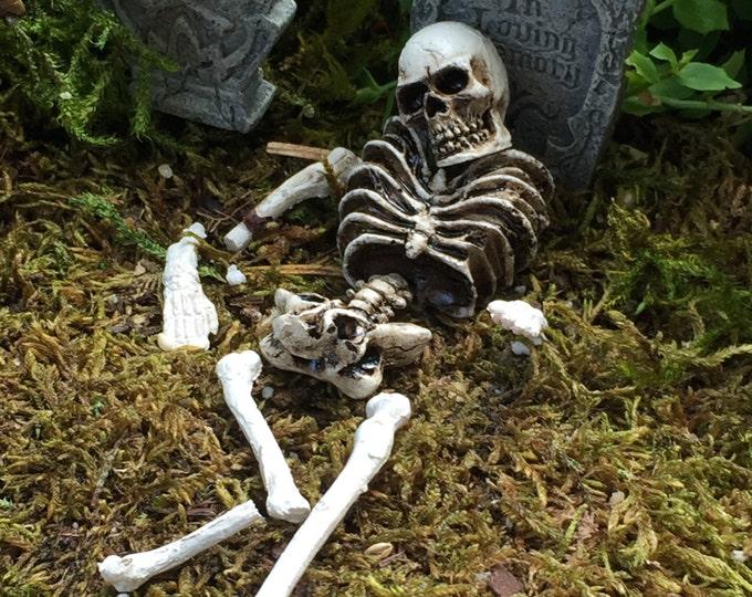"Miniature Skull and Skeleton Bones, 9 Piece Set, ""Bag of Bones"" Fairy Garden Accessory, Garden Decor, Halloween Decor"
