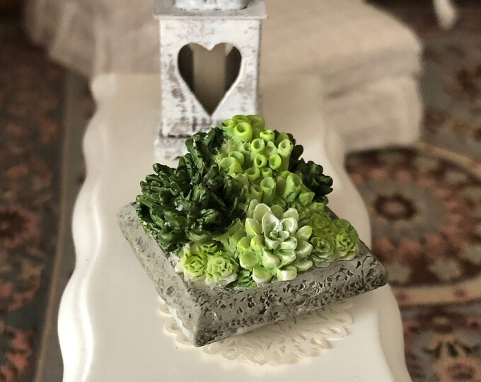 Miniature Succulent Planter, Mini Cactus, Dollhouse Miniature, 1:12 Scale, Dollhouse Decor, Accessory, Mini Dollhouse Plants, Cacti