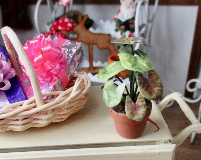 Miniature Plant, Mini Green Variegated House Plant in Flower Pot, Style #50, Dollhouse Miniature, 1:12 Scale, Dollhouse Decor, Accessory