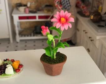 Miniature Gerber Daisy in Clay Flower Pot, #02, Dollhouse Miniature, 1:12 Scale, Miniature Flower, Home & Garden Decor