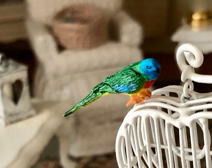 Miniature Bird, Splendid Grass Parakeet Miniature Bird Figurine,  Dollhouse Miniatures, 1:12 Scale, Miniature Bird Figurine