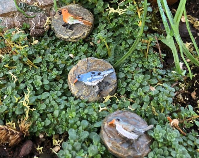 Mini Bird Stepping Stones, Path Rocks, Mini Garden Stones, Walkway Stones, Fairy Garden Accessory, Miniature Garden Decor, Crafts