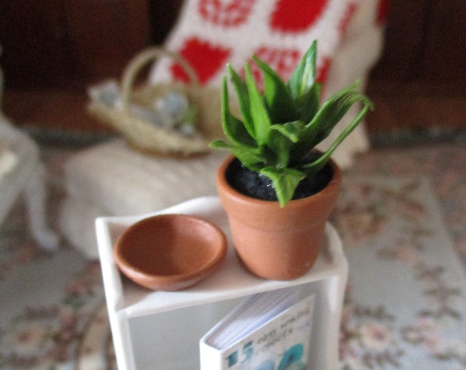 Miniature Plant, Mini House Plant in Terra Cotta Flower Pot With Saucer, Style #81, Dollhouse Miniature, 1:12 Scale, Dollhouse Accessory