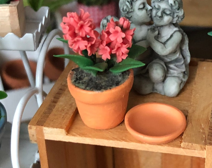 Miniature Hyacinth, Hyacinth in Clay Flower Pot With Removable Saucer, Style 80PK, Dollhouse Miniature, 1:12 Scale, Miniature Flowers