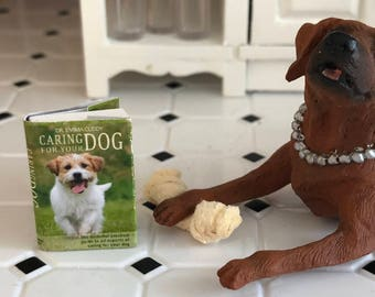 Miniature Book, Caring For Your Dog, Dollhouse Miniature, 1:12 Scale, Dollhouse Mini Book, Accessory, Decor, Crafts, Embellishment