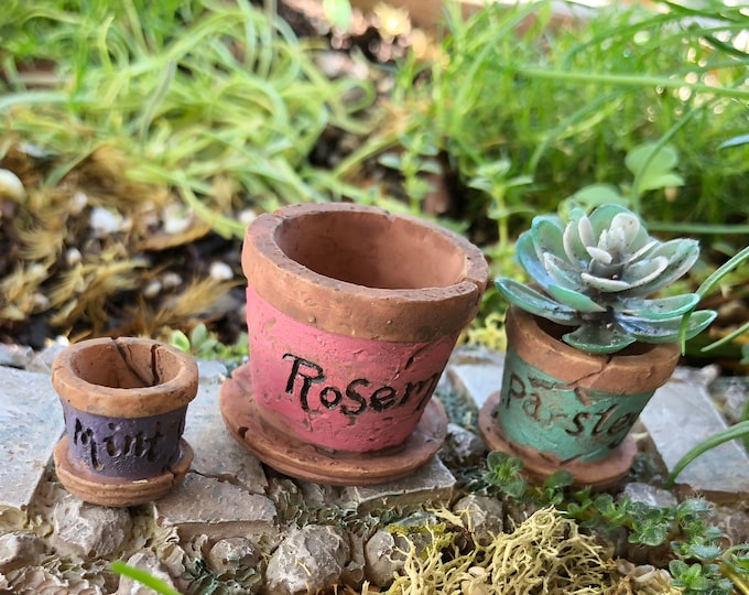 Mini Flower Pots, Weathered Look Resin Flower Pots, Distressed Herb Flower Pots, Fairy Garden Accessory, Miniature Garden Decor, Crafts