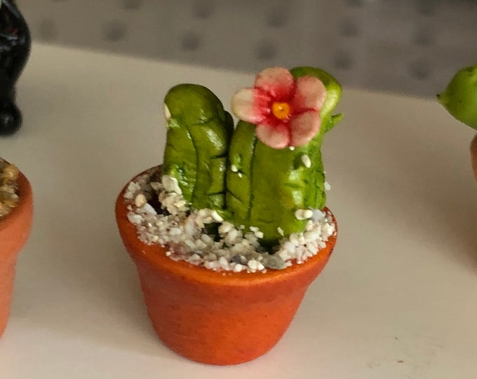 Miniature Cactus, Flowering Cactus in Clay Flower Pot, Style #01,  Dollhouse Miniature, 1:12 Scale, Accessory, Decor, Mini Plant